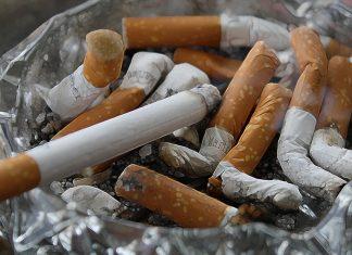 Mercado de tabaco ha disminuido más del 50% en cinco años