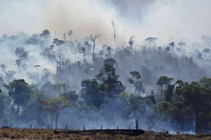 Nuevos incendios en la Amazonía de Brasil pese a prohibición de quema de Jair Bolsonaro